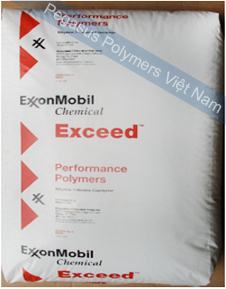 EXXON MOBIL-EXCEED